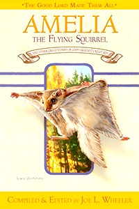 Amelia the Flying Squirrel