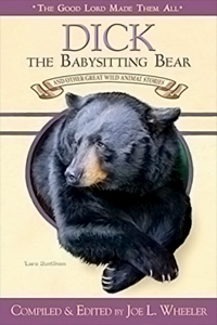 Dick the Babysitting Bear