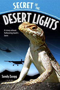 Secret of the Desert Lights